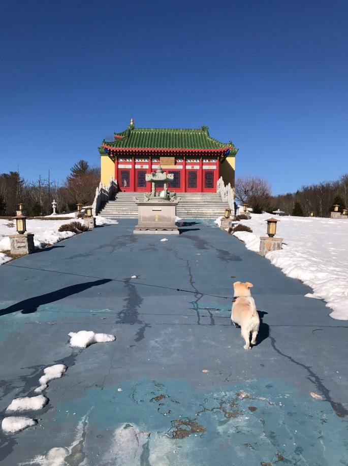 Callie at Mahayana Temple